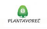 PLANTAVOREL SA